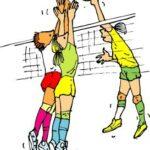 Volleybal-kleur