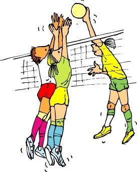 Volleybaltoernooi !